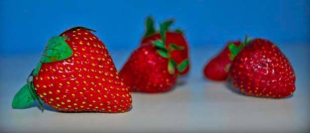 Meyveler – Fruits