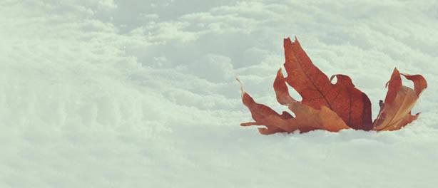 Kar – Snow