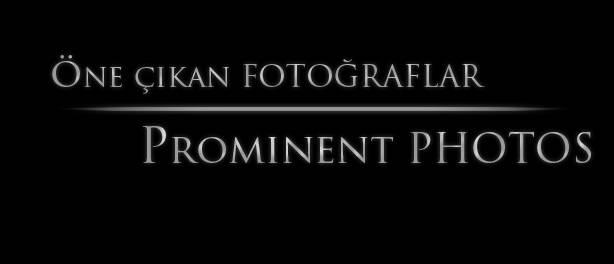 Öne Çıkan Fotoğraflar | Prominent Photos